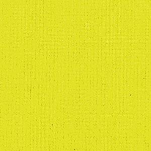 citrus-yellow-91